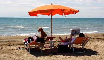 vacanza per cani a Bibione
